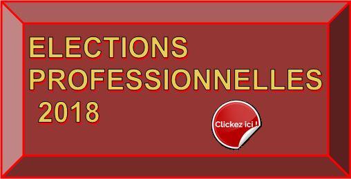 Logo elections pro 00