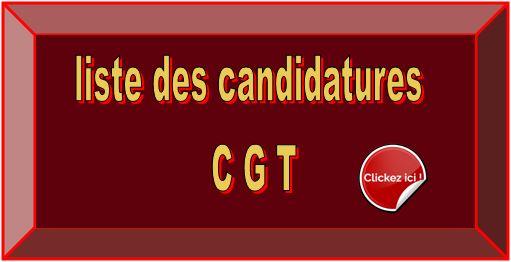 Logo elections pro 01