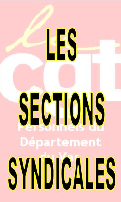 LES SECTIONS